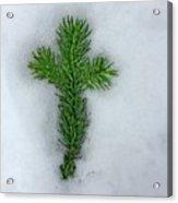 Evergreen Snow Cross Acrylic Print