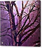 Everlasting 2 Acrylic Print