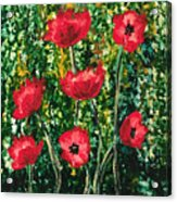 Every Dream Turns Up Poppies Acrylic Print