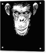 Evil Monkey Acrylic Print