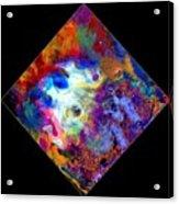 Evolution Series 1006 Acrylic Print