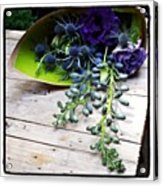 Excellent Customer Service. #flowers Acrylic Print