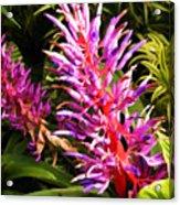 Exotic Flora Acrylic Print