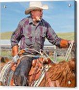 Experienced Cowboy Acrylic Print