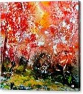 Exploding Nature Acrylic Print