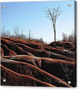 Exposed And Eroded Badlands Acrylic Print