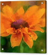 Expressive Sunflower Acrylic Print