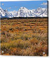 Extended Willow Flats Panorama Acrylic Print