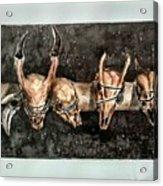 Extinction Acrylic Print