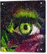 Eye And Butterflly Vegged Out Acrylic Print