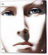Eye Contact Acrylic Print by Dan Holm
