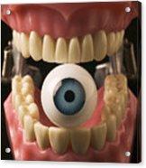 Eye Held By Teeth Acrylic Print by Garry Gay