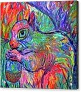 Eye Of The Squirrel Acrylic Print