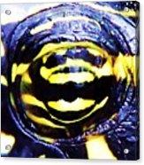 Eye Of The Turtle Acrylic Print