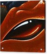 Eye Of The Volcano Dragon Acrylic Print
