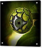 Eye Will See You In The Garden Acrylic Print