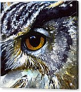 Eyes Of Owls No.25 Acrylic Print