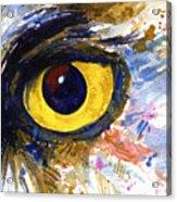 Eyes Of Owl's No.6 Acrylic Print