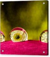 Eyes Of The Petal Acrylic Print