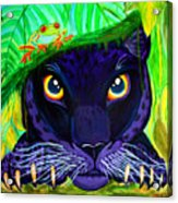 Eyes Of The Rainforest Acrylic Print