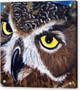 Eyes Of Wisdom Acrylic Print