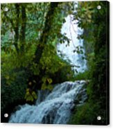 Eyes Over The Flowing Water Acrylic Print
