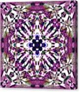 Fabex Acrylic Print