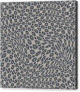 Fabric Design 11 Acrylic Print by Karen Musick