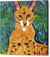 fabulous cat portrait in the style of Van Gogh's Acrylic Print
