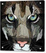 Face De Puma Acrylic Print