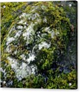 Face In The Stone Acrylic Print