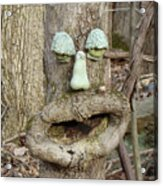 Face In The Woods Acrylic Print
