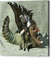 Face Jug Flycatcher Acrylic Print