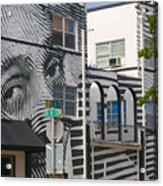 Face On House Acrylic Print