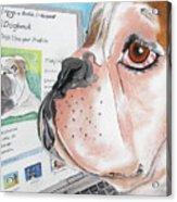 Facebook Dog Acrylic Print