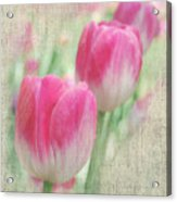 Faded Floral 8 Acrylic Print