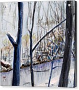 Fairfax Winter Acrylic Print