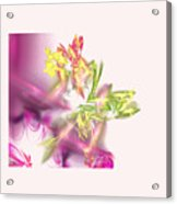 Fairies Acrylic Print