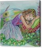 Fairy Dreams Acrylic Print