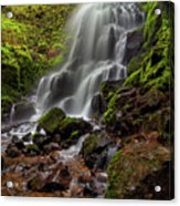 Fairy Falls In Columbia Gorge Acrylic Print