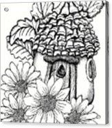 Fairy House With Pine Cone Roof And Daisies Acrylic Print
