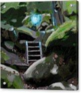 Fairy In The Wood Acrylic Print