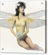 Fairy Luck Acrylic Print