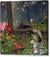 Fairy Night Acrylic Print
