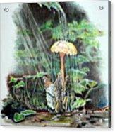 Fairy Shower Acrylic Print