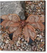 Fairy Wings- Brown Acrylic Print