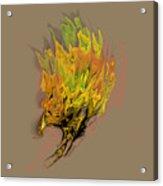 Falcon Fire Acrylic Print