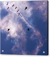 Falcons Versus Crows Acrylic Print