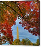 Fall 2015 Washington Dc Acrylic Print