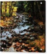 Fall Along Tenant Creek Acrylic Print